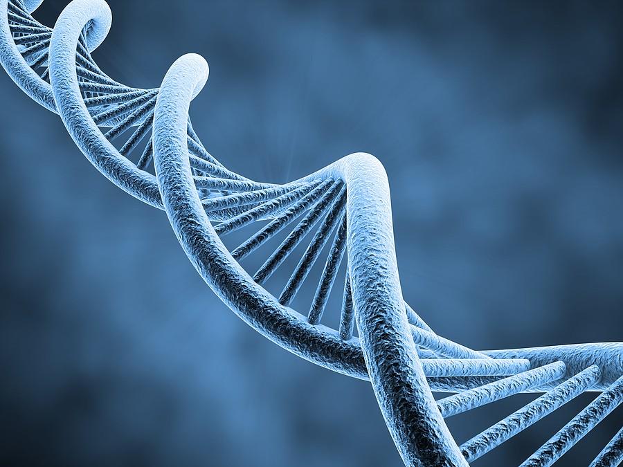 Εξετάσεις DNA Αναλύσεις Γενετικού Υλικού